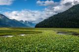 Scenery along the Alaska Railroad, AK