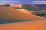 Mesquite Flats Dunes, Death Valley, CA