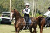 ~ 123 Veda Elvington on Sultan's Lucky Flair