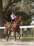 74 Kayla Gordon on Ollie; Barn Champagne