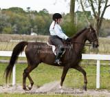 98 Gleeson Bray on Ciroc; Barn Avalon