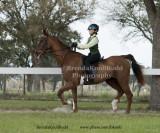 67 Abby Perez on Sanibel;  Barn Sailwinds