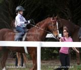 73 Kathryn Kilwanger on Yankee;  Barn Champagne