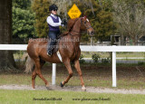 97 Irina Sherman on Lee; Barn Avalon