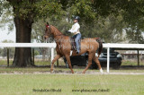 63 Madison Phillips on Sanibel; Farm Sailwinds