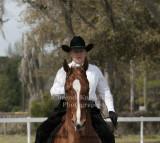 99 Cheryl Jines on Heir Cooled; Barn Avalon