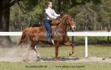 Feb 23, 2014 Gallery of Photos 83 Cherina Avery on Rozzanna Bonesso;  Barn Serenity