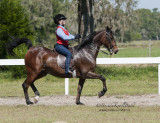 145 Erin Reiley on Rare Treasure, Arbordale Riding Academy