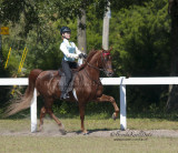 149 Hannah Wears on Pete, Champagne Stables, LLC