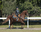 150 Hannah Wears on Pete, Champagne Stables, LLC