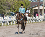 12.	Beginner Walk/Jog only Horsemanship Western