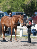 9.	Youth Western Showmanship
