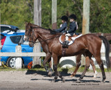 35.	Walk Equitation (Western or English)