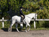 43.	Pony Walk/Trot Equitation