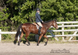 49.	Jr. Walk/Trot English Equitation