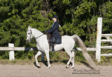 51.	Sr. Walk/Trot English Equitation