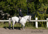 53.	Pony English Equitation