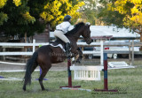 """62-65 Jumping 18"""" (2 fences)"""