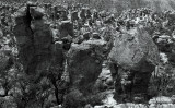 Chiricahuas rock columns