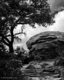 Trail in Chiricahua Mountains