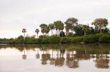 Uitzicht vanaf Rufiji river tijdens boottocht