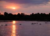 Zonsondergang op Rufiji River met nijlpaarden