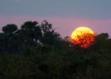 Zonsondergang in Selous Game Reserve