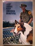 Help Lassie