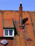 Domäne Loog roof