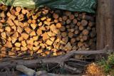 Groix wood