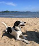 44: on the beach