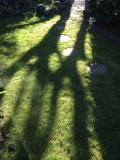 long shadows-IMG_4610.jpg