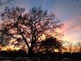 sunset-IMG_3767.JPG