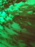 shadows-IMG_3766.jpg