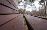 The Park Bench - Another View