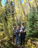 Aspens along American Lake Trail
