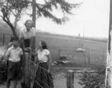 AFB 28 1955.jpeg