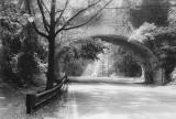 Cresheim Valley Road, Philadelphia 1981.