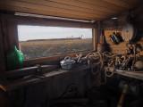 Bernaches du canada à la cabane