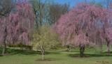 Brandywine  Park Wilminton DE