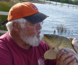 Fish Kisses, Boilies and Golden Bonefish