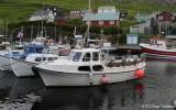 Hvalnes SA 48