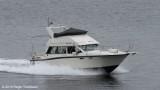 Bøllur TN 1262