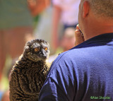 Endangered Species Faire May 4, 2013
