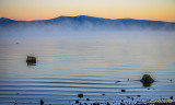 Humbug Road to Lake Almanor, Plumas County, CA Oct. 18-19, 2014