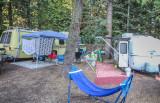 Guitarfish camping