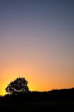 Sunrise over Woodbury Common