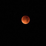 RED MOON - Supermoon : taken @ 03:38 Hampshire - England
