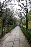 Birdcage Walk, Clifton, Bristol
