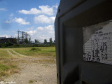 view from the porta potty